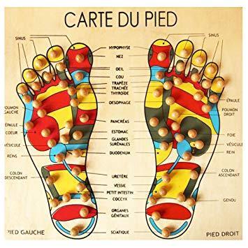 Carte du pied